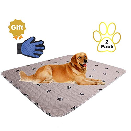 What Are Puppy Pee Pad Made of?