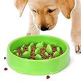 ZONSUSE Comedero Perro Gato, Tazón de Fuente del Doméstico Alimentador del perro Lento Abajo Comiendo,Bebedero Cuenco,Lento Abajo Comiendo, Antideslizante,Interactivo Bol para Perro de Mascota (Verde)