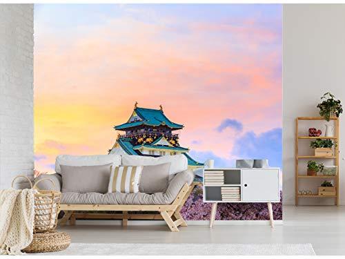 Papel Pintado para Pared Castillo de Osaka - Japón| Fotomural para Paredes | Mural | Papel Pintado | Varias Medidas 400 x 300 cm | Decoración comedores, Salones, Habitaciones.