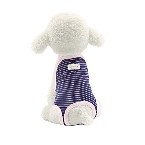 Pageantry kleinen Hund schutzhöschen Hund physiologische Hosen Schutzhose für läufige Hündinnen Hygienehose Höschen