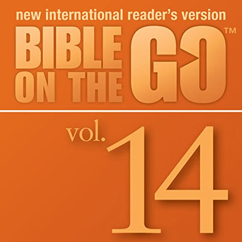 Bible on the Go Vol. 14: The Story of Ruth (Ruth 1-4) audiobook cover art