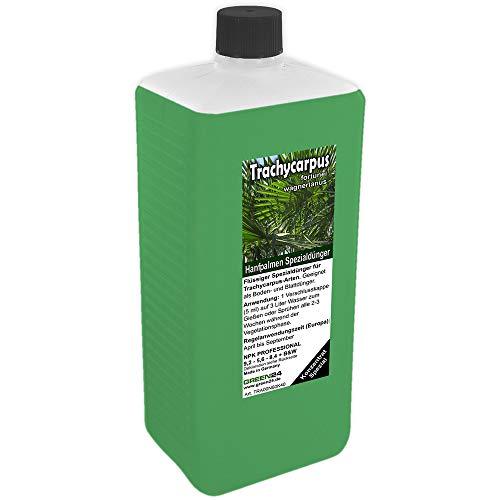 GREEN24 Trachycarpus Dünger XL 1 Liter für Hanfpalmen Tessinerpalmen Trachycarpus fortunei wagnerianus Palmen als Spezial Wurzeldünger + Blattdünger Profi Linie düngen