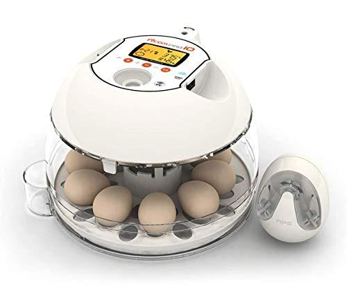 R-COM Inkubator R-COM10 PRO PLUS für 10 Eier