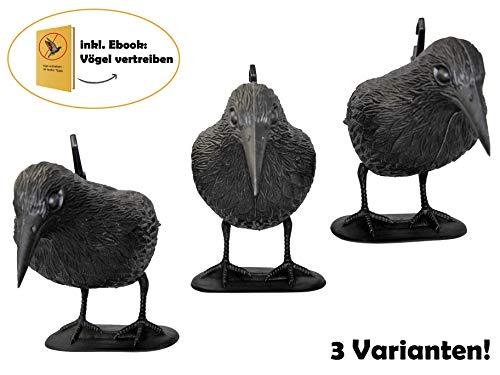 Premium Taubenschreck Rabe 3er Set | aus wetterfestem Kunststoff | inkl. ebook