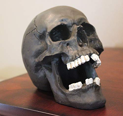 Seraphic Creepy Halloween Human Skull Sculpture with Mouth Open, Black