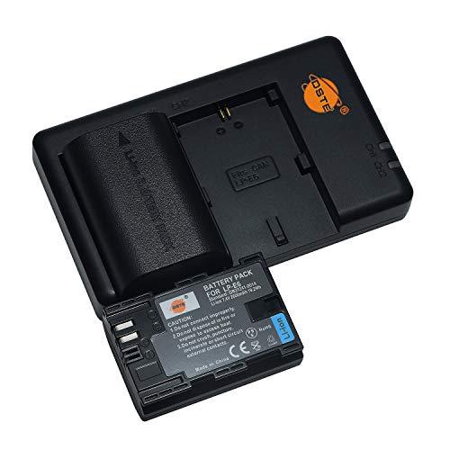 LP-E6 (2 pezzi) Batteria di ricambio ricaricabile e doppio caricatore compatibile con Canon EOS 90D, EOS R,EOS 6D Mark II, EOS 5D Mark IV,EOS 80D, XC10,EOS 5DS,EOS 5DS R,XC10,XC15 ecc