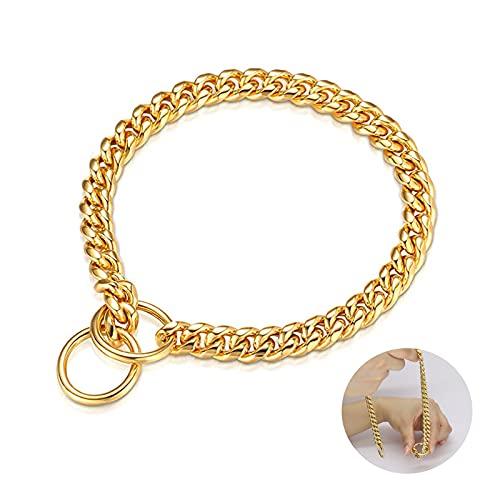 Hundehalsband Gold aus Edelstahl, 10mm Starker Hochleistung Dauerhaft 316L Metall Kettenhalsband für Kleine Mittel Große Hunde(L-22)