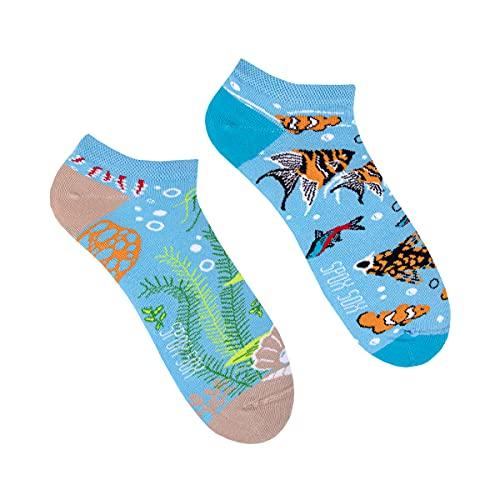 Spox Sox Low Unisex - mehrfarbige, bunte Sneaker Socken für Individualisten, Gr. 36-39, Aquarium