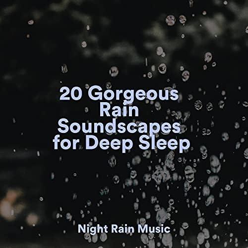 Rain Shower Spa, Rain Sounds Nature Collection & Saludo al Sol Sonido Relajante