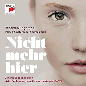 Ich habe genug, BWV 82: III Aria - Schlummert ein (Alt)