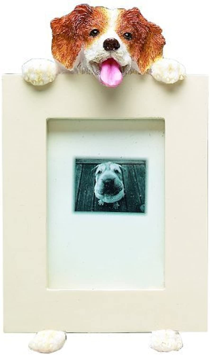 E&S Pets Brittany Spaniel Picture FrameHolds 2.5 x 3.5  photo by E&S Imports, Inc