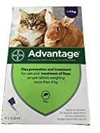 BY Ad-vantage Flea Prevention & Treatment For Cats, Over 9 Pounds