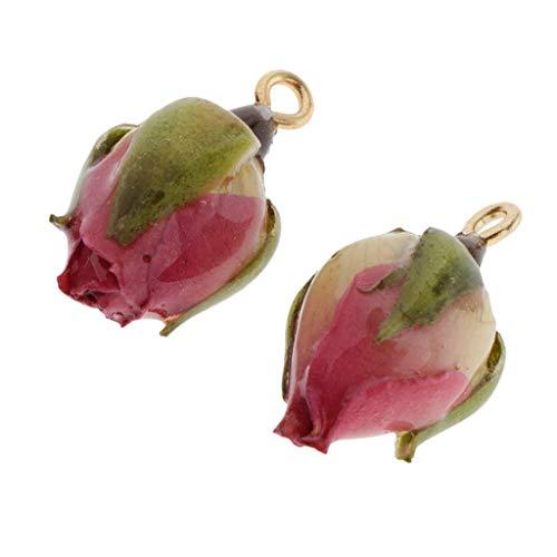 F Fityle Colgante de Encantos de Brotes de Flores Reales Envueltos en Resina de 2 Piezas para Hallazgos de Joyería de Bricolaje - Capullo de la Flor, Los 2x1cm