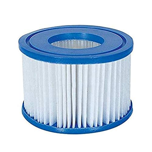Suncolor8 Prevenir 1 / 2pcs Inflable al Aire Libre Bañera de hidromasaje SPA Piscina Filtro Cartucho de reemplazo de la Bomba de Agua Kit de Accesorios de Filtro Mantenimiento (Color : 2Pcs)