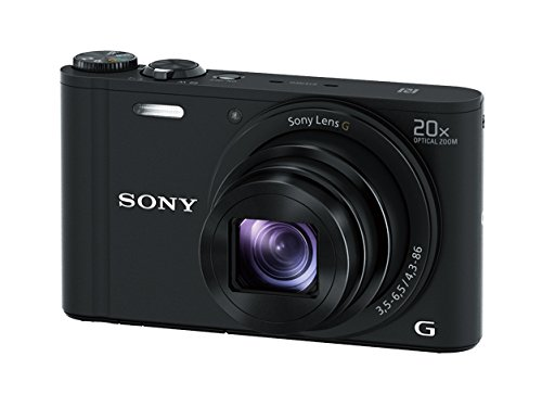 Image of Sony DSCWX350 18 MP Digital Camera: Bestviewsreviews