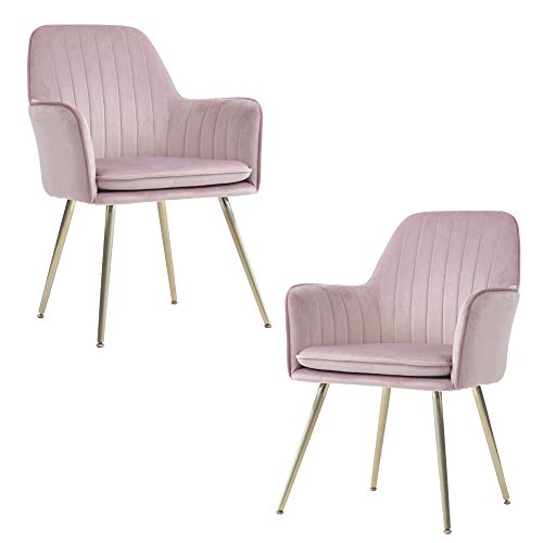 Lansen Furniture (Set of 2) Modern Living Dining Room Accent Arm Chairs Club Guest with Gold Metal Legs (2, Pink Mauve)