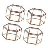 GPWDSN Paquete de 4 Mini Cajas de joyería de Vidrio de terrario geométrico...