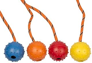 Duvo+Rubber Ball With Rope Dog Toy (10460)