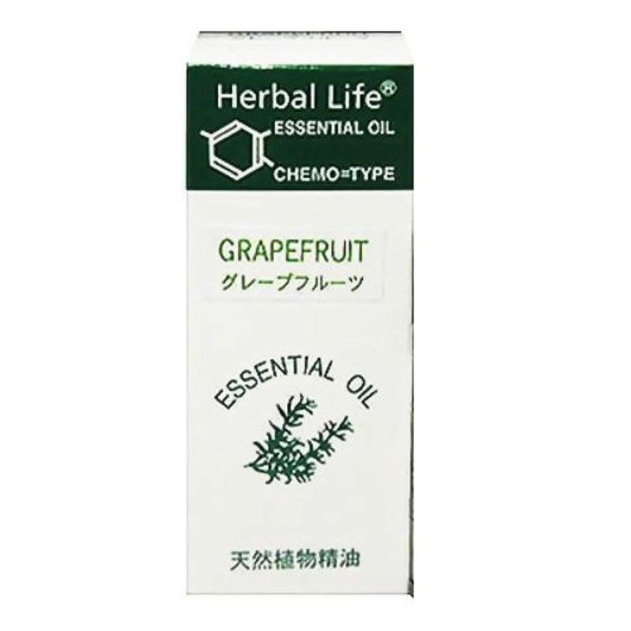 考案するログロケーション生活の木 エッセンシャルオイル グレープフルーツ 10ml