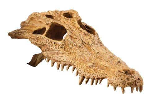 Exo Terra Krokodilschädel Terrarium Deko