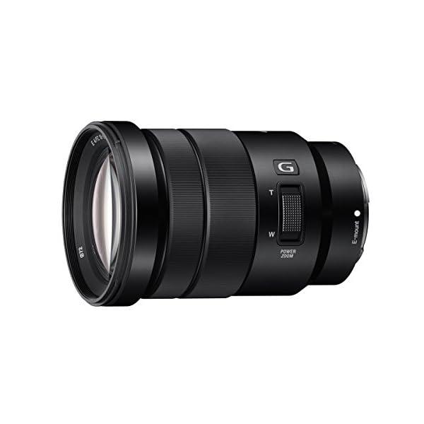 RetinaPix Sony SELP18105G E Mount APS-C 18-105 mm F4.0 Zoom G Lens (Black)