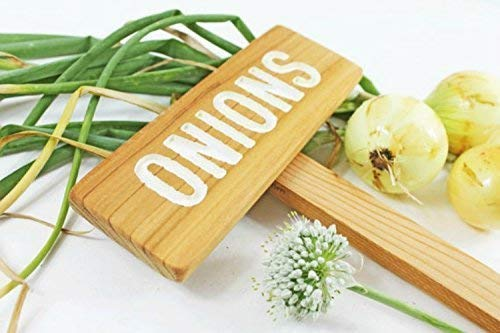 ONIONS Garden Sign Painted Bombing Our shop most popular new work Oil Wood: Routed Cedar Sealed Hand