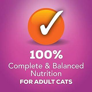 شراء Purina Friskies Poultry Adult Wet Cat Food Variety Pack - (32) 5.5 Oz. Cans