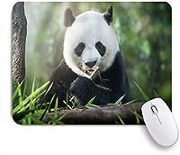 ZOMOY マウスパッド 個性的 おしゃれ 柔軟 かわいい ゴム製裏面 ゲーミングマウスパッド PC ノートパソコン オフィス用 デスクマット 滑り止め 耐久性が良い おもしろいパターン (緑の森で竹を食べる動物のかわいいパンダ)