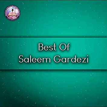 Best of Saleem Gardezi