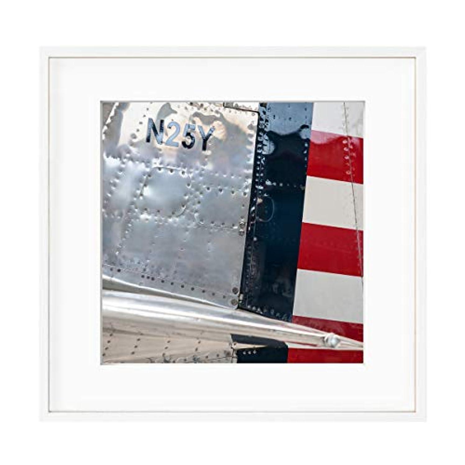Aeroplane Bodywork, Satin Black Aluminium Frame, with Mount, Multicolored, 40x40