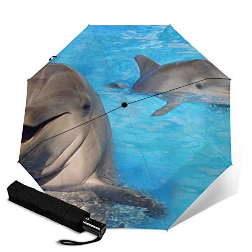Delphin, Faltbarer Regenschirm, Winddicht, UV-Schutz, Kompakter Regenschirm für Reisen, täglichen Gebrauch