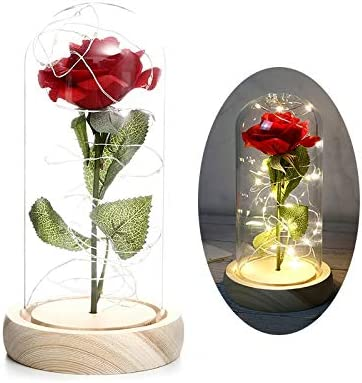 Artificial and Dried Flower 11 Color Boston Mall Beast The Beauty Over item handling Ro Red