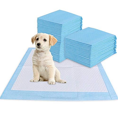 BIGA Pet Training Mat Non-Slip Leak Free Pee Pads with Regular Absorbency for Dogs Puppy Potty 80 Counts Total 23.6
