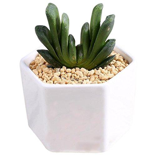 Outflower - Pot de fleurs hexagonal en céramique blanche - Produit créatif, parfait pour les succulentes, les mini plantes, décorer le bureau, le balcon, la chambre à coucher