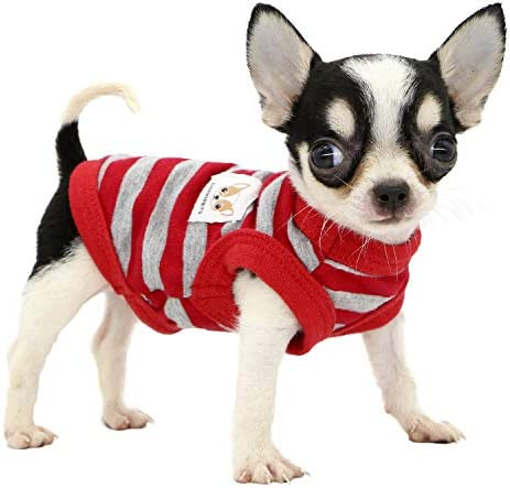 LOPHIPETS 100 Cotton Striped Dog Shirts for Small Dogs Chihuahua Puppy Clothes Tank Vest Red product image