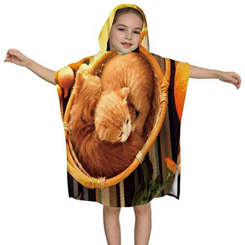 IUBBKI Kitten in Basket and Autumn Pumpkins Other Fruits Vegetables on a Wooden Thanksgiving Table Domestic Cat,Kids Soft Cotton Hooded Poncho Bath Towel for Boys Animal