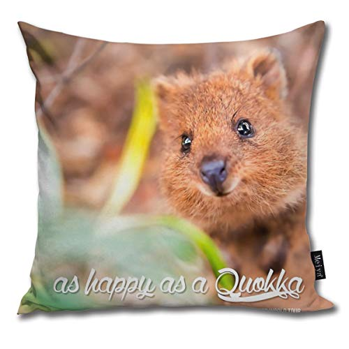 QMS CONTRACTING LIMITED Throw Pillow Cover As Happy As A Quokka #1 Decorative Pillow Case Home Decor Square 18x18 Inches Pillowcase