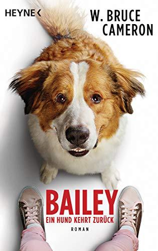Bailey - Ein Hund kehrt zurück: Ich bleibe bei dir - Buch zum Film - Roman