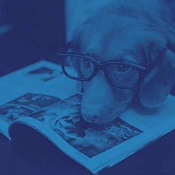 ヒップ-犬の訓練