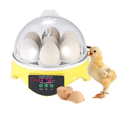 Chidi Toy Inkubatoren für Geflügeleier, 7 Eier Digital Inkubator Automatische Brutmaschine Brutkasten mit Temperaturkontrolle für Huhn Ente Gans Vogel Truthahn