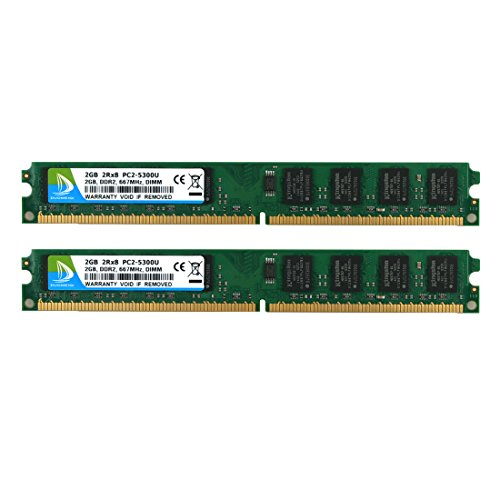 DUOMEIQI 4 GB-Kit (2 x 2 GB) 2RX8 DDR2 667 MHz DIMM PC2-5300U PC2-5300 PC2-5400 CL5 1,8 V 240 PIN 5300U Nicht ECC-gepuffertes Desktop-RAM-Modul Kompatibel mit Intel AMD-System - Grün