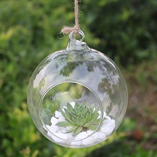 Jarrón colgante de flores de cristal, maceta de terrario, contenedor para decoración del hogar, boda, soporte al por mayor y Dropshipping-120 mm, Estados Unidos