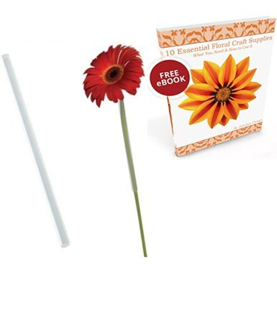 "Gerbera Daisy Floral Arranging Straws Tubes 3/8"" x 8"" PlusFlower Crafting Tools eBook Bundle"