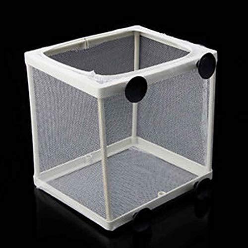 Demino Aquarium Fish Tank Guppy Fokkerij Fokker Baby van Vissen Gaas Trap Box Isolator