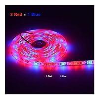 5M LEDは、植物の花の種子成長温室水耕12V 5050SMDフルスペクトラムのための光テープPhytolamp LEDストリップランプを育てます (Emitting Color : 3 Red 1 Blue, Wattage : Not Waterproof)