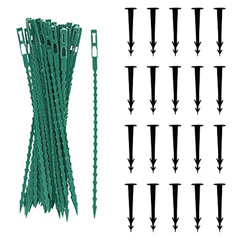 Bird Protection Net, Green garden net, Bird net with 50 plastic straps and 20 garden securing pins, for yard protection of plants, fruits, vegetable seedlings - Multiple specifications are available