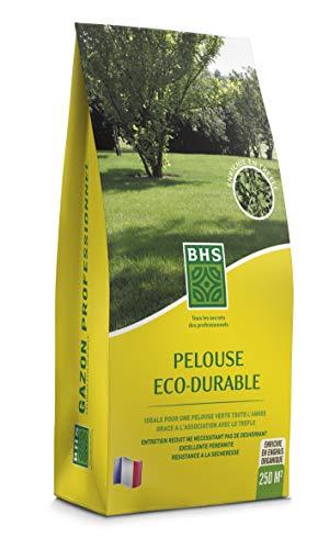BHS PED5 | 5kg | 250 m² | Gazon Eco Durable | Graminées et trèfle | Pelouse Verte Toute l'année | Economique en Eau | Facilité d'Implantation, Homogène