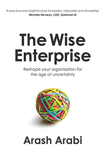The Wise Enterprise (English Edition)