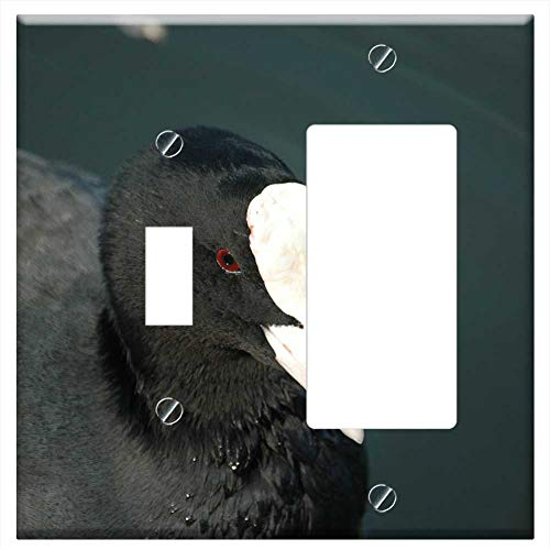 Toggle Rocker/GFCI Combination Wall Plate Cover - Coot Duck Water Bird Ralle Bird