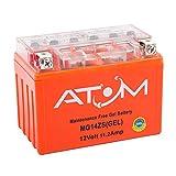 ATOM Motorbike Batteries